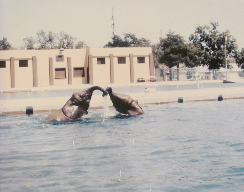world's largest municipal swimming pool, garden city ks | flickr
