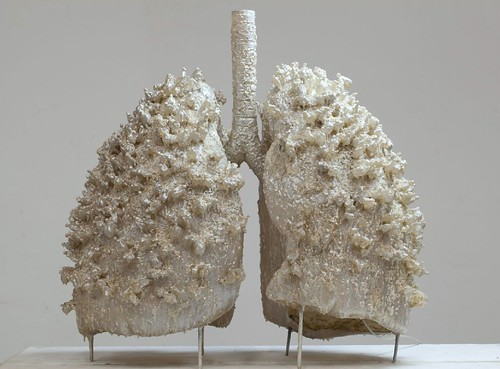 [ H ] Ma Han - Breathing Systes - Lungs (2008) | by Cea.