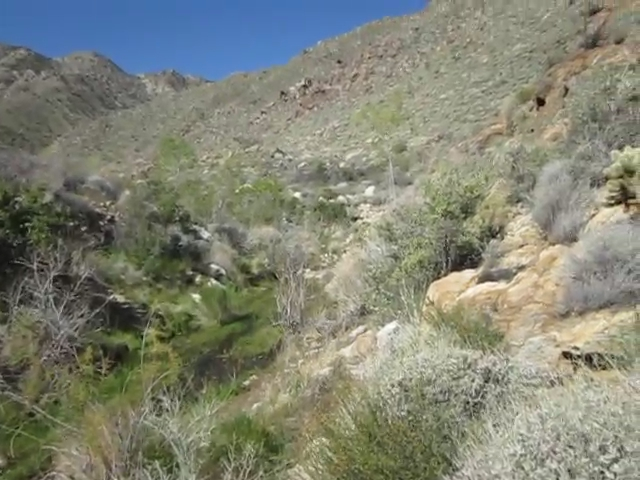 Indian-Canyon_105