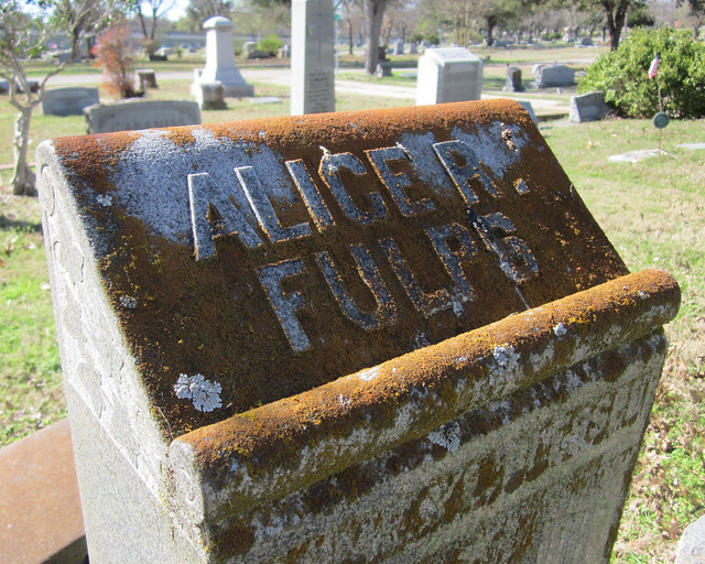 Scroll with lichen on a gravestone - Alice R. Fulps