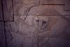 Persepolis, foto: Petr Nejedlý