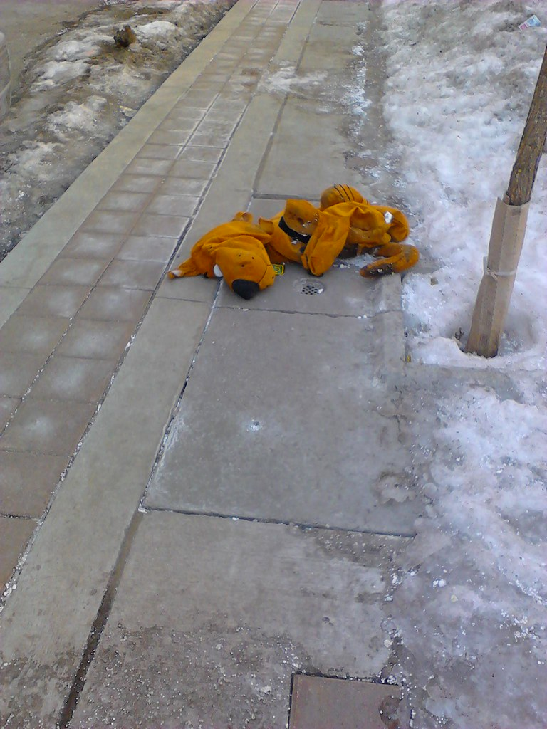 Scooby Doo is dead I was waiting for my bus when I saw