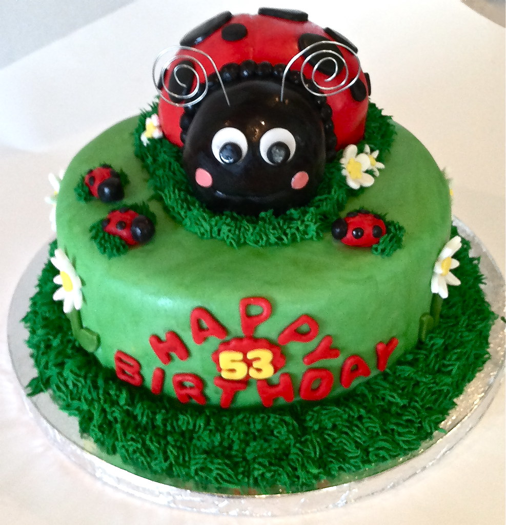 Groovy Fondant Ladybug Birthday Cake Read My Blog Post About This Flickr Funny Birthday Cards Online Alyptdamsfinfo