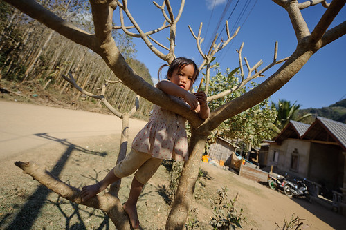 Lao Girl in a Tree | by goingslowly