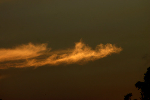 sunset nsw 2010