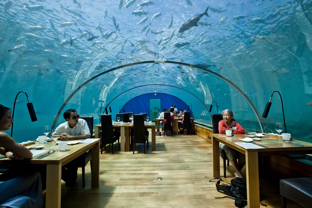 Ithaa Undersea Restaurant at Conrad Maldives Rangali Island Resorts.
