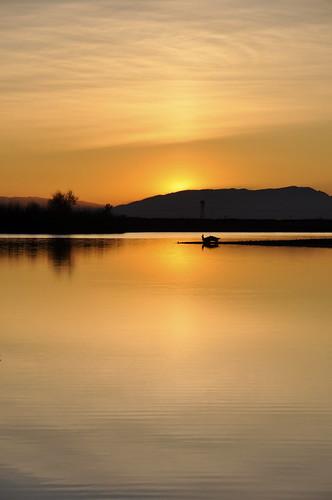 california sunset sun lake water northerncalifornia chico horseshoelake buttecounty csuchico d90 18200mmf3556gedifafsdxvr