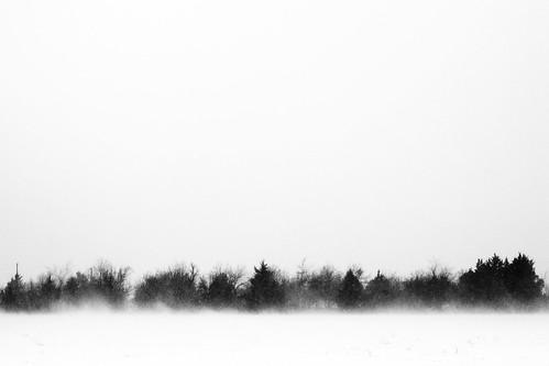 trees winter blackandwhite bw usa white snow black tree oklahoma canon landscape geotagged photography 50mm blackwhite unitedstates minimal snowing minimalism f18 okc ok blizzard oklahomacity midwestcity thriftyfifty 40d canon40d