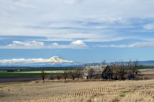 19february2011 february 2011 columbiarivergorge klickitatvalley scenic mountadams volcano