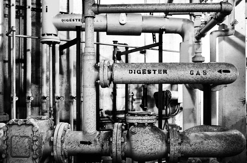 pipes | by cementley