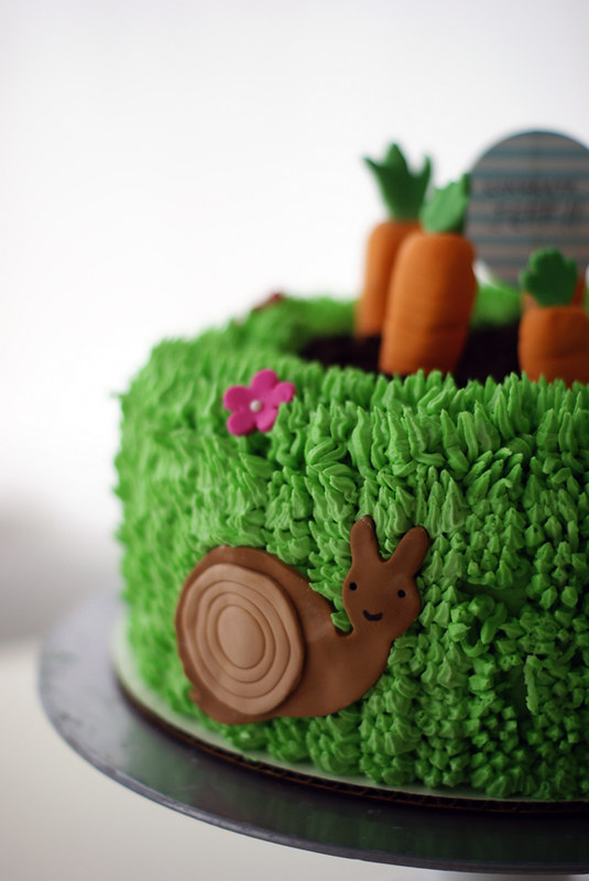 garden cake detail -- my buddy the Snail!