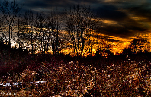 winter sunset ohio sky woods champion hdr nikond90 1685mmnikonlens