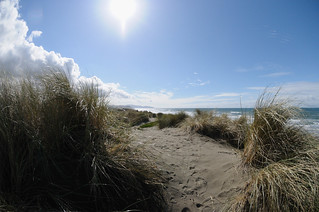 Ocean Beach dunes | by Hitchster