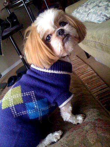frack sweaters