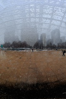 Snow and the Seams of the Bean | by Viewminder
