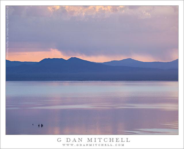 Purple Dawn, Mono Lake
