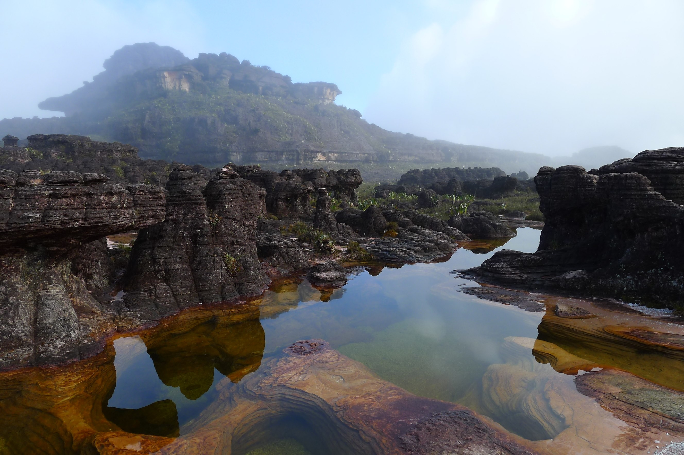 """Jacuzzis"". Summit of Roraima"