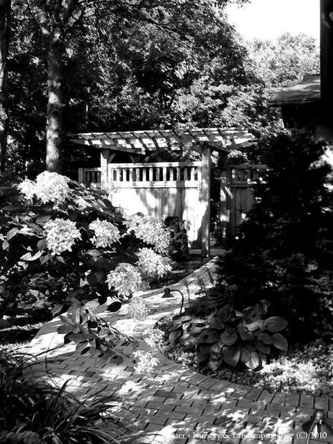 the ART of Landscape Design - Landscapes in Black & White