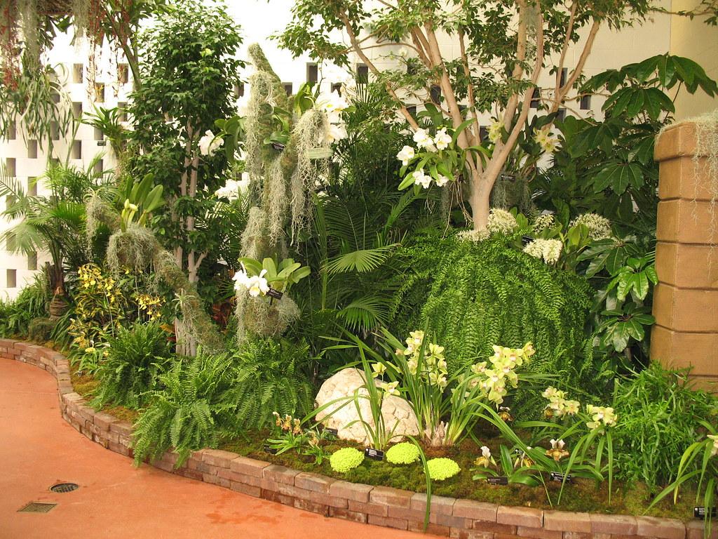 Orchid show 2011 missouri botanical garden flickr - Orchid show missouri botanical garden ...