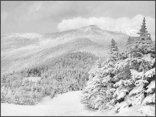 trees snow tree nature forest landscape flickr vermont frost day outdoor tram jaypeak vt borderfx