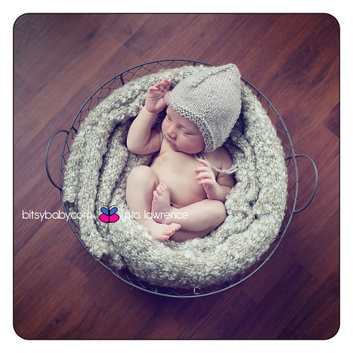 newborn photography in wire basket | by Bitsy Baby Photography [Rita]