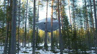 No, it's just the newest suite at the Tree Hotel | by US Embassy Sweden