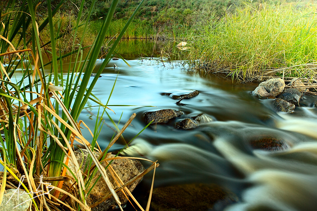 Queanbeyan River at Go...