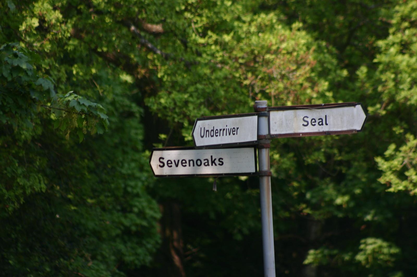 Seal village