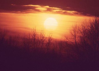 Winter Sunset  (1977)