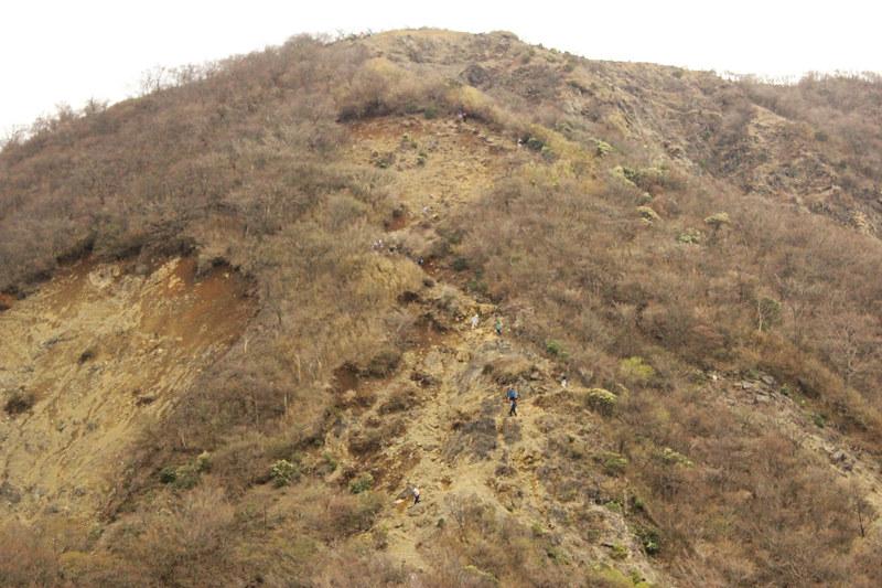 20110429_塔ノ岳(表尾根)_0024
