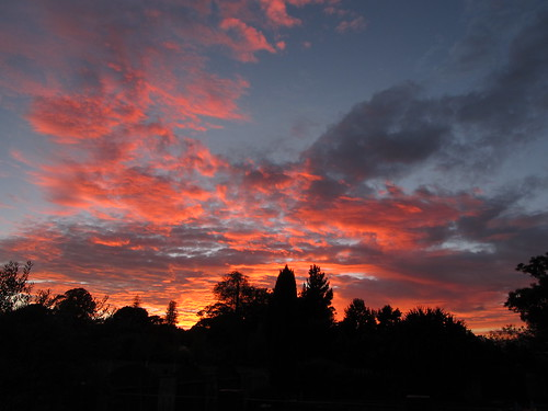 new sunrise zealand gisborne hexton