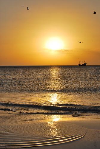 ocean sunset sea bird beach photography ship gulf tide low derek pirate clearwater allnaturesparadise liceks