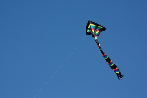 Free as a kite | by The Bacher Family