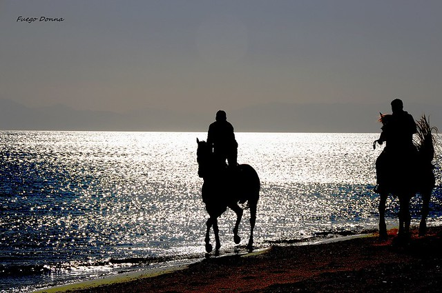 riding by the sea