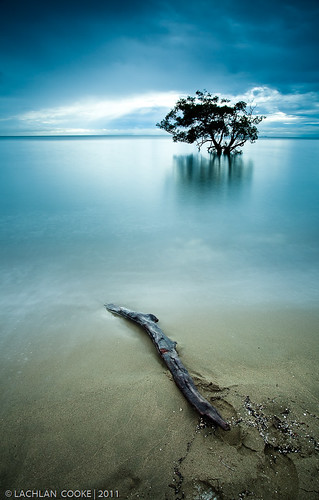 longexposure morning trees reflection beach water clouds canon bay sand tide smooth brisbane driftwood filter qld stick 1740mm nudgee nudgeebeach ndx400 5dmkii lockiecooke