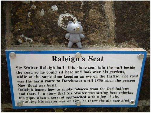 Smoggy on Raleigh's Seat