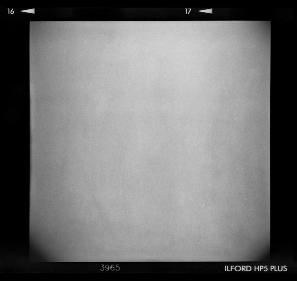 Holga Film Texture The Full 6x6 Negative Shot On My