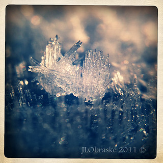 frost9 | by Joanna5600