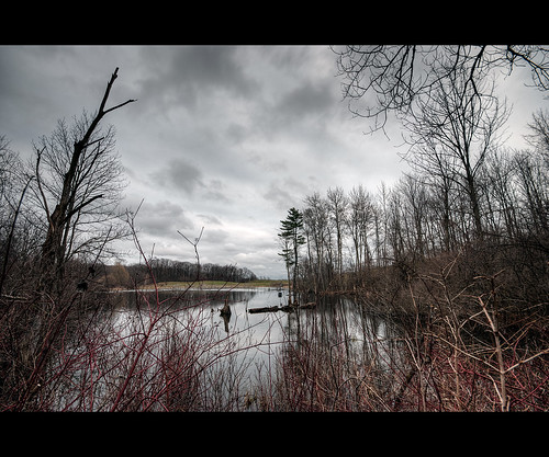eau lac sigma arbres sombre 1020 hdr ambiance etang 10mm buissons marecage