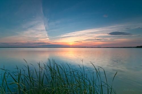 life usa lake sunrise landscape dawn scenery mood florida peaceful serenity mind 365 innerpeace tranquil meaning odc polkcounty bartow 1116 lakehancock tokinaaf1116mmf28 ourdailychallenge