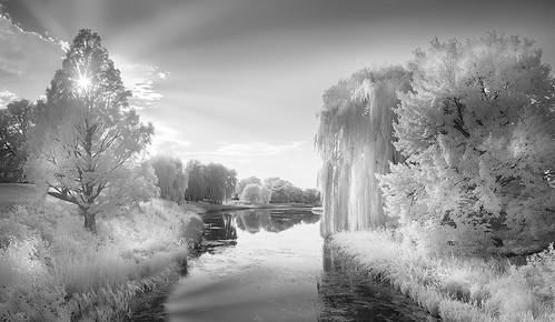 white sky monochrome trees chi 2016 clouds nenadspasojevic atthegates fun infrared ir nature shadows naturallight lake sun exploration sunset black gray chicago sunrays water canal pano chicagobotanicgarden illinois il usa
