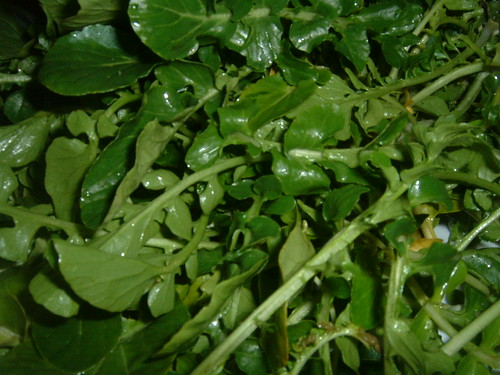 Watercress | by HealthAliciousNess