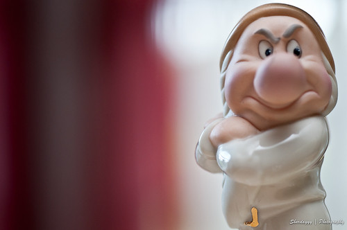 138/365 - 05/18/11 - Grumpy Dwarf | by Shardayyy
