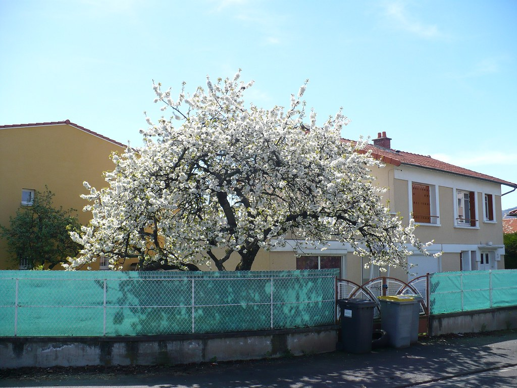 Rencontre Sexe 17 Charente-Maritime Et Plan Cul 17 Charente-Maritime