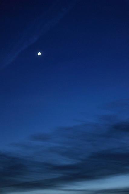 Abendstern - Evening star