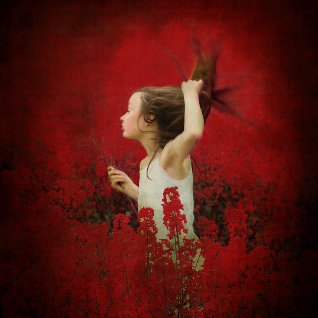 Red riverdance through the rape field