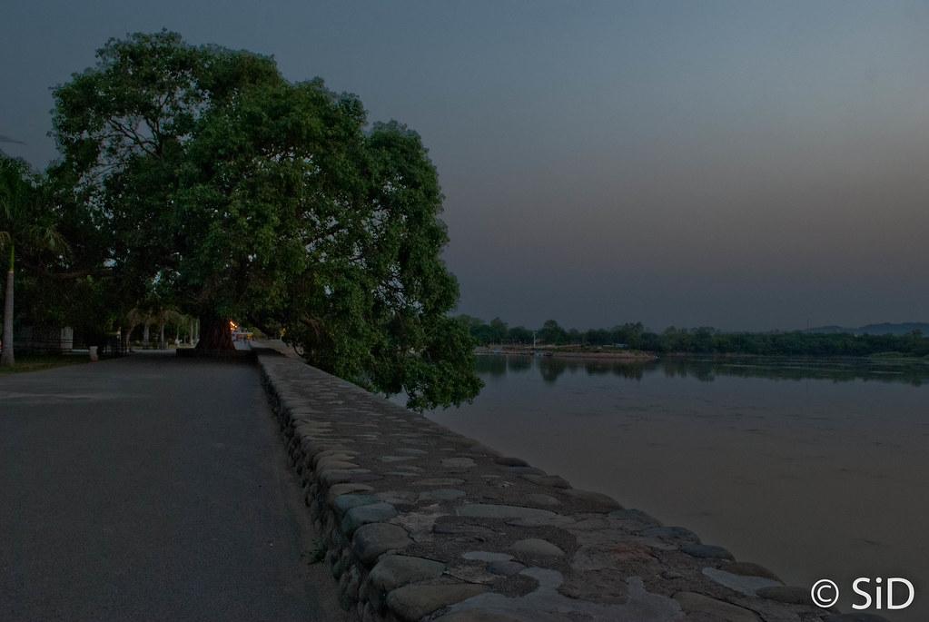 The famous 'bargad' ka ped   Sidharth Bedi   Flickr