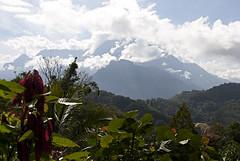 898-899 Kinabalu mount