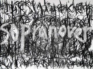 14 sopranova | by celf o gwmpas