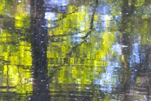 abstract distanthillgardens impressionism impressionistic nature pond reflection reflectionoftrees reflectiononwater trees water zen